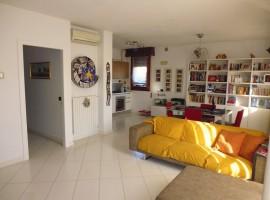 Rif. 237 Appartamento in centro a Villatora