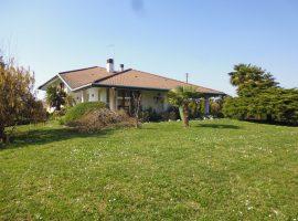 Rif. 1078 Villa in Centro a Vigonovo