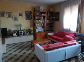 Rif. 1124 Appartamento con tre camere e giardino a Vigonovo